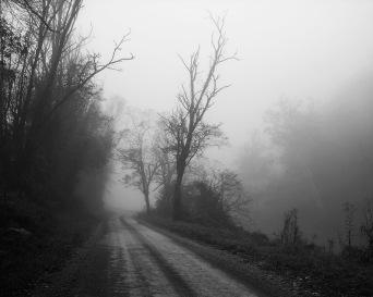 """Early Morning Watauga River Road, 8""""x10"""" digital photograph"""