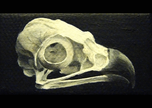 "Miniature Skull, 2010, 1""x2,"" oil on canvas--SOLD"