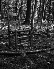 "Prosthetic Incantation, 2011, digital photograph, 11"" x 14"" -- $55"